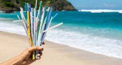 Eliminating plastic straws
